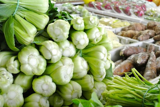 Nekonečná zelenina a bylinky všude kam se podíváš.